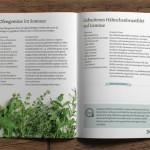 Kochbuch Gertrude Mumm-Tiessen-Innenseite